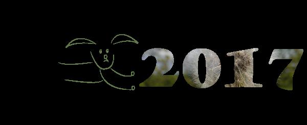 Programterv 2017